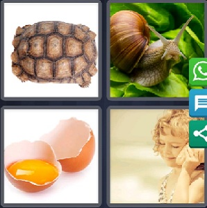 4 Pics 1 word August 18 2019 puzzle clue