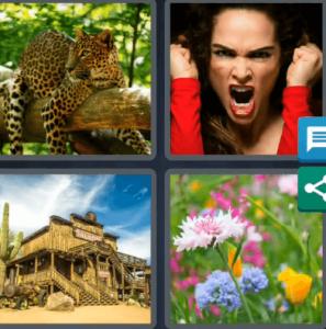 4 Pics 1 Word Daily Bonus Puzzle Answer April 2 2020