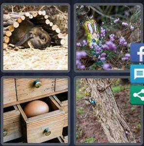 4 Pics 1 word April 13 2020 Bonus puzzle
