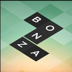 bonza puzzle