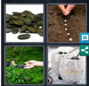 4 Pics 1 Word September 29 bonus 2020