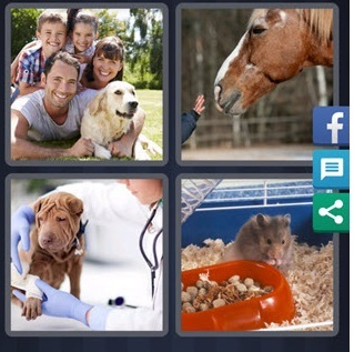 4 Pics 1 Word November 8 2020 Answer